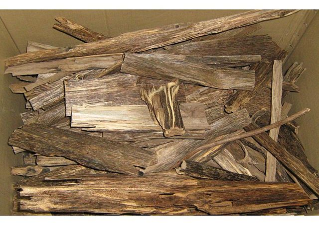 Stycken av agarträ i en pappkartong