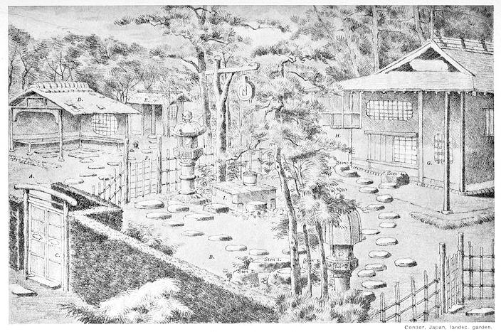 Japansk teträdgård